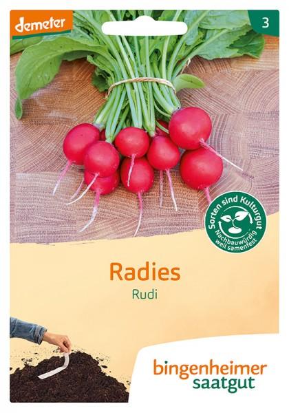 Radies Rudi GS (5 m Saatband)