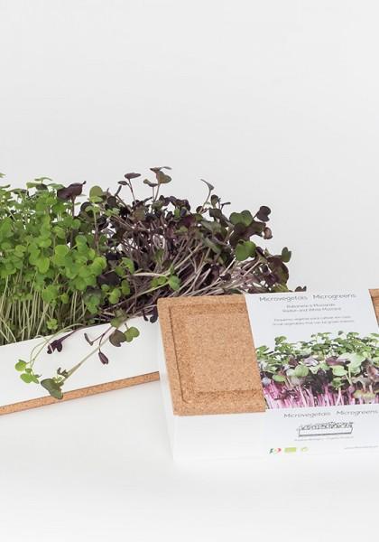 Microgreens Set Senf & Radieschen