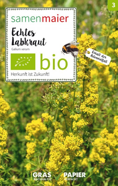 Wildblume Echtes Labkraut