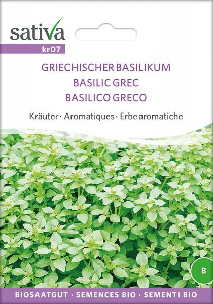 Griechischer Basilikum