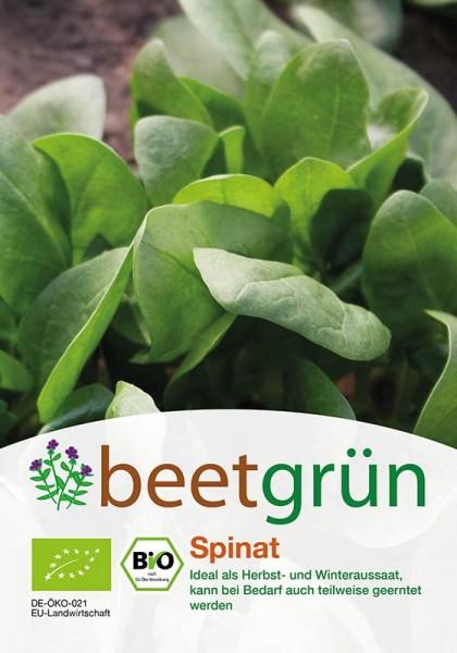 beetgrün BIO-Gründünger Spinat