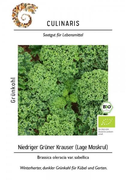 Grünkohl Niedriger Grüner Krauser