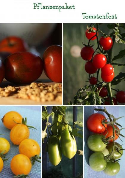 Tomatenfest - 6 Pflanzen