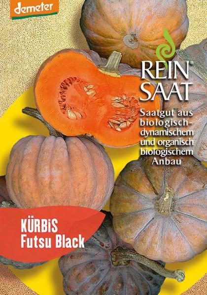 Kürbis Futsu Black
