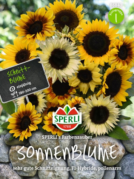 Sonnenblumen SPERLI's Farbenzauber