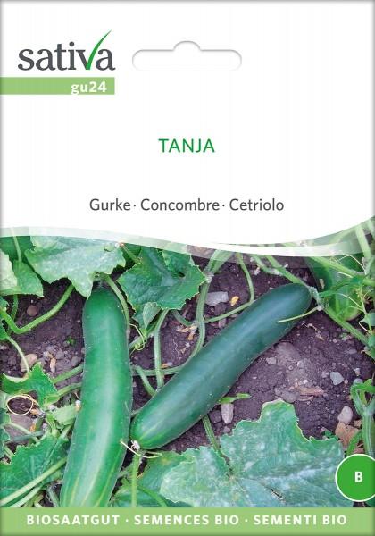 Gurken Tanja