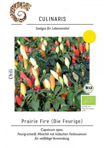 Chili Prairie Fire